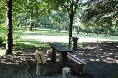 Поставиха нови пейки в зоната за барбекю в парка край Благоевград.