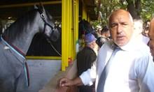 Бойко Борисов от Сливен: Ще настоявам в Брюксел пред колегите да спрат нападките си срещу Турция (Обзор, снимки)