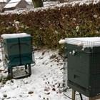 Данните са наистина стресиращи за смъртта на пчелите в различни части на Обединеното кралство за две поредни години