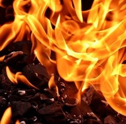 Клошар, живял в хралупа на дърво, е мъртвият, открит при гасене на пожар край Звъничево