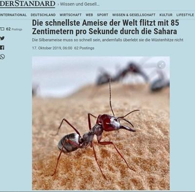 Факсимиле: derstandard.de