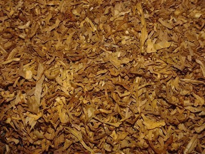 Откритото количество тютюн общо е около 100 кг.