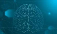Капацитетът на мозъка: Загиваме на секундата, ако се натовари 100%