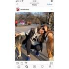 Никол Станкулова с призивхората да осиновяват,а не да купуват кучета