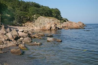 Минокопът се крие в скалите на Черно море.