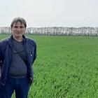 Дъждът съживи житните посеви, връща надеждата на фермерите