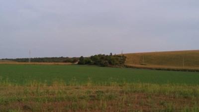 Общинските служби по земеделие ще издават решение за уедряване на земи, което има силата на нотариален акт.