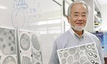 Нобелист откри как да бъдат победени болестите на старостта