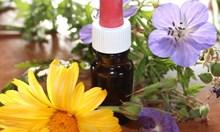 Франция спира да плаща за хомеопатични лекарства от 2021 г.