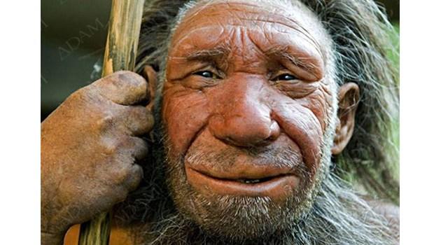 Откриха част от ДНК на Денисовия човек при азиатците