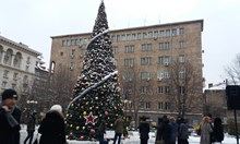 """Подарената от Москва елха е сложена на площад """"Св. Неделя"""" - подигравка с паметта на 150-те убити през 1925 г. по поръчка на комунистическа Русия"""