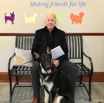 Джо Брайдън с Мейджър, който ще влезе в историята като първото куче от приют, живяло в Белия дом.