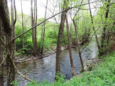 Река Драговищица СНИМКА: Уикипедия/Vassia Atanassova - Spiritia