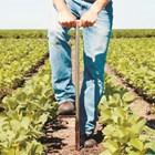 Пазарът на въглерод в почвата ще расте бързо