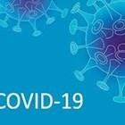 COVID в 4 училища в Пловдивско, 9 души починаха