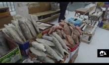 На пазар в Якутск  при -45 градуса
