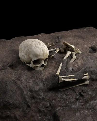 Костите са открити в Кения през 2013 г., но са били толкова деликатни, че са били необходими години, за да бъдат разкопани.