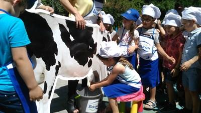 Децата се учиха как се издоява млякото СНИМКА: Дима Максимова