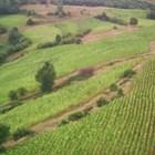 Собствениците на земи, служебно разпределени за обработване, могат до 10 г. да получат рентите