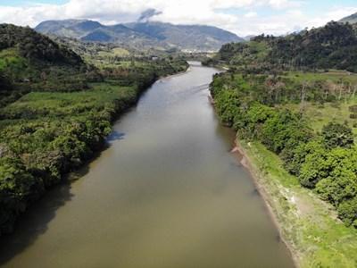 Кадър на река Амазонка Източник: Pixabay