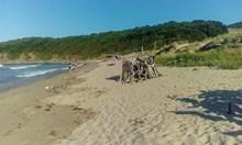 Стихове върху скали и дървени биваци превземат дивите плажове