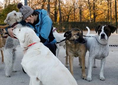 Близостта с кучето спасява от депресия. СНИМКА: РОЙТЕРС
