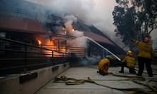 Огнен ад в Калифорния унищожи домовете на Джерард Бътлър и Майли Сайръс