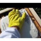 Ако в гнездото храната е привършена, което е недопустимо при нормална подготовка и зазимяване, в замяна на празните пити на пчелите трябва да се дадат пити с мед от склада.