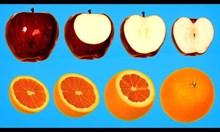 Разрез на плодове заснет на таймлапс