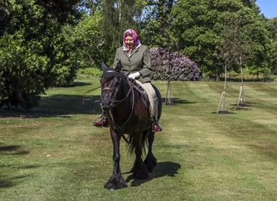 Кралица Елизабет язди кон в градините си. СНИМКА: РОЙТЕРС