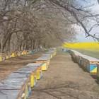 Неоспорим факт е, че благодарение на държавната подкрепа през последните две години пчеларството в републиката постигна очевидни успехи. Проведени са проучвания на производствената база на пчеларството, броят на пчелните семейства и обемът на производството на мед продължава да расте, стабилен е и износът на мед.