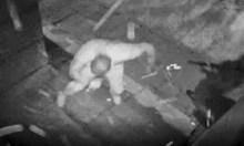 Уникално видео - Куката оцелява след обстрел с Калашник и хуква да гони убиеца!