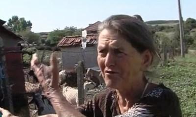 Тодорка Сакалиева от с. Шарково бранеше своите животни от евтаназия. КАДЪР: bTV