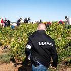 През 2019 г. разбиха мрежа за експлоатация на български работници край Лион.