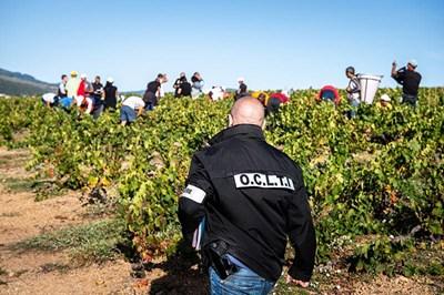 През 2019 г. разбиха мрежа за експлоатация на български работници край Лион. СНИМКА: Европол