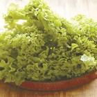 Зелените салати