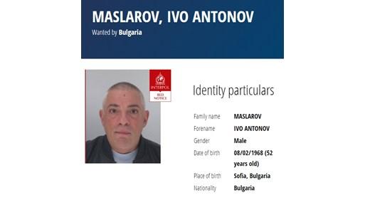 Вижте Иво Масларов, който е издирван от Интерпол за убийството на Станка Марангозова