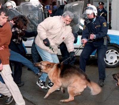 Повечето ухапвания се случват не на улицата, а в домашна среда и жертвата познава нападателя си. СНИМКА: РОЙТЕРС