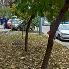 Все още продължава огледът на мястото, където се е самоубила възрастната жена. Снимка: Румен Златански