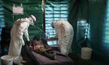 Преди 38 години: Белгийски доктор получава в термос първите проби от смъртоносната ебола