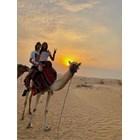 Тишо и Елеонора яздиха камила