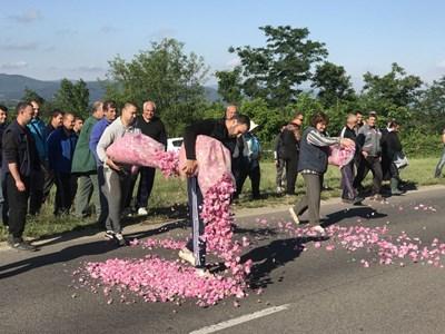 По време на протеста си производителите от Черганово засипаха асфалта на пътя Казанлък - Стара Загора с розов цвят. СНИМКА: Ваньо Стоилов