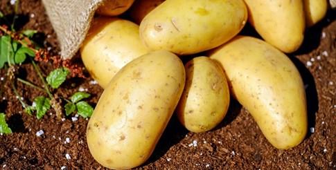 Резен картоф или царевично нишесте срещу изпотяване