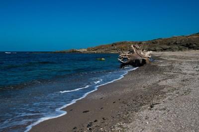 """Плажът """"Листи"""", където е една от десетте локации. СНИМКИ: НОВА ТВ"""