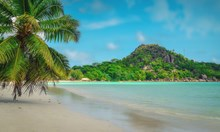 Сейшелите отново ще приемат туристи, но само ваксинирани срещу COVID-19