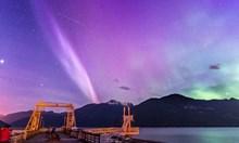 Необяснима лилава светлина в небето над Канада. Не е Северното сияние