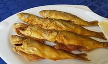 Риба от Черно море чак след Стара Загора, ако...