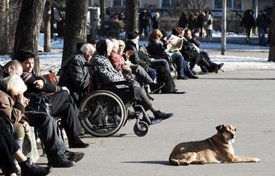 Броят на пенсионерите на 100 работещи постоянно се увеличава, показват данните на НОИ. СНИМКА: Йордан Симeонов