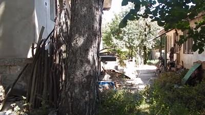 Тялото на мъжа е било открито заровено в двора на къщата му във видинското село Кошава  Кадър : youtube