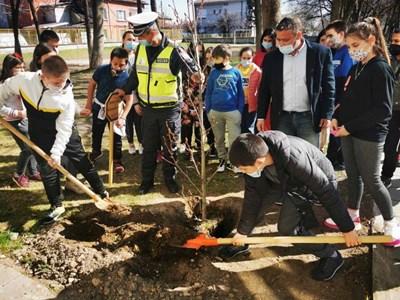 Полицаят Ботьо Гиргинов сади дръвчета с млади еколози.